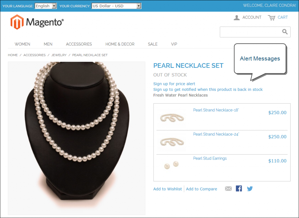Product Alerts in Magento
